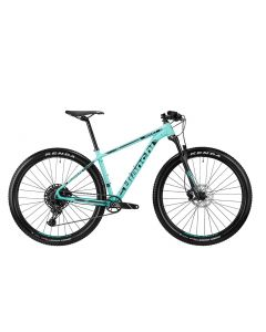 Grizzly 29.1 NX Eagle 2019